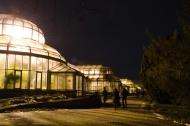 Nächtliche Gewächhäuser, Foto: K. Schomaker / Botanischer Garten und Botanisches Museum Berlin